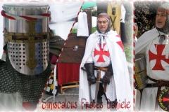 Daniele-Templare
